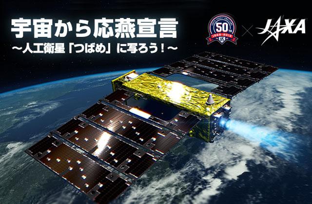 ~宇宙から応燕宣言~人工衛星「つばめ」が撮影した写真公開!