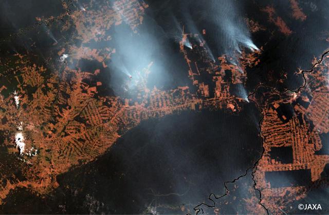 2019年8月ブラジル・アマゾンの林野火災に関する衛星観測
