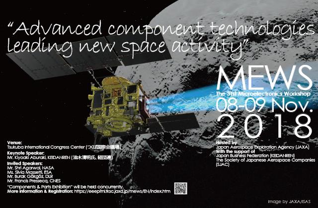 第31回マイクロエレクトロニクスワークショップ(MEWS31)
