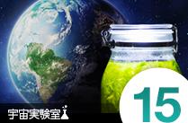 宇宙実験室 15 - 瓶の中に地球を作る ボトルアクアリウムを作ってみる 第2弾